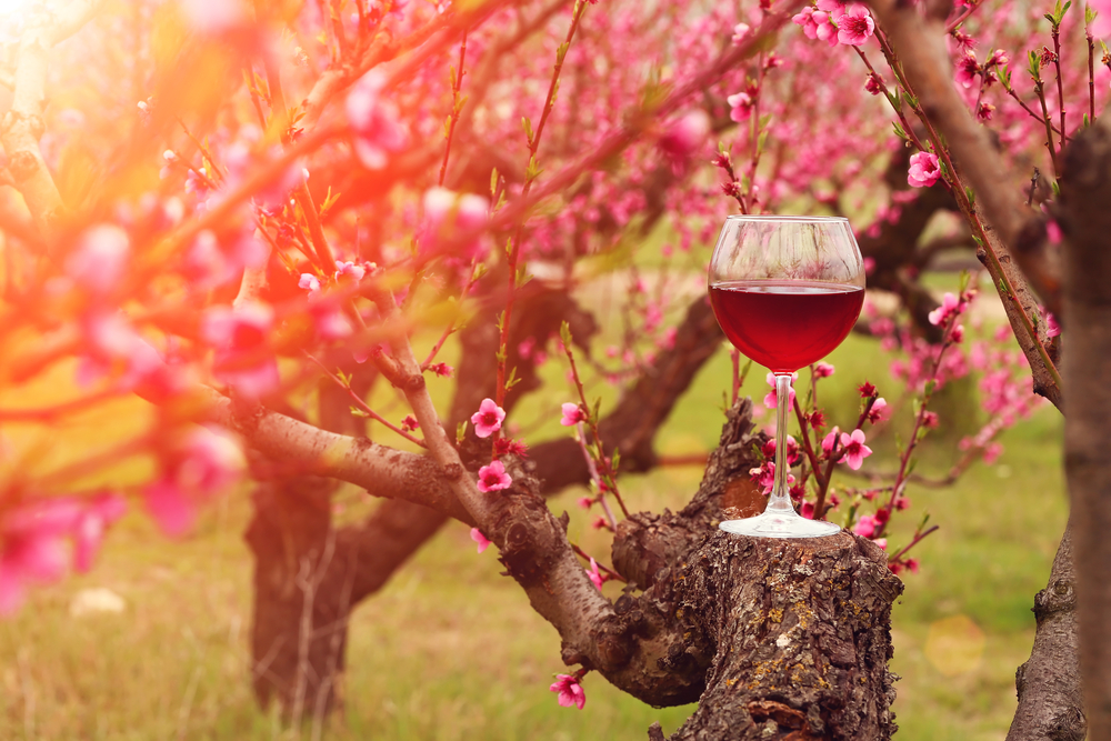 Spring in Your Wine Glass