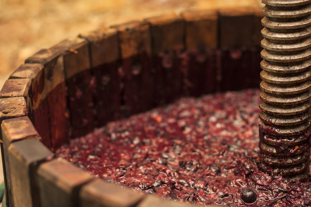 Effettivo e potenziale: che tipo di alcol troviamo nel vino
