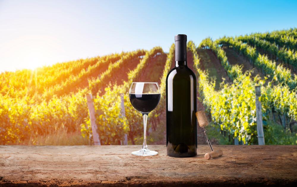 """Colorino, Ciliegiolo e Canaiolo: alla scoperta dei vitigni """"minori"""" della Toscana"""