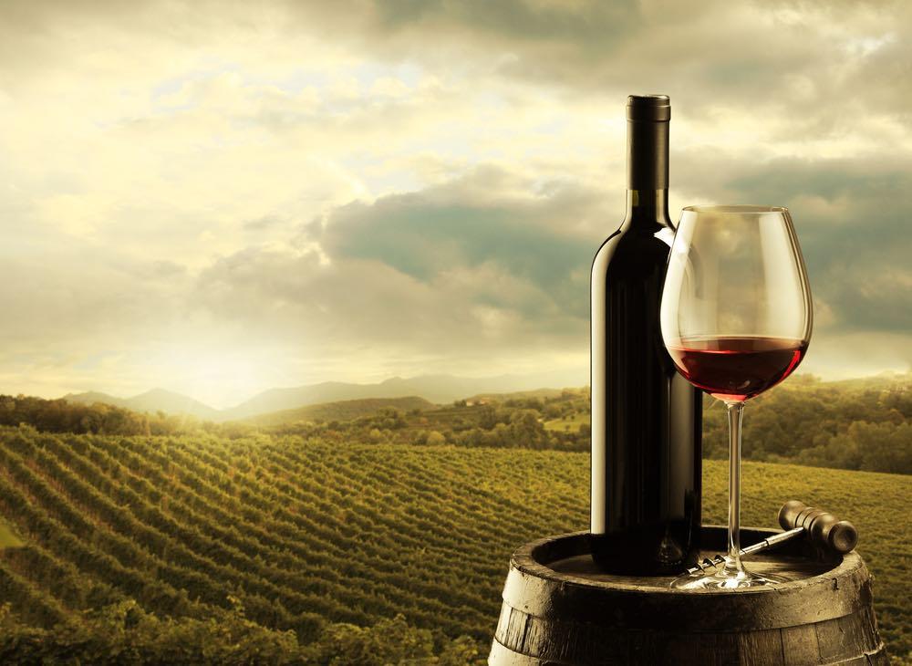 Cabernet Sauvignon e Merlot: alla scoperta dei vitigni francesi in Italia