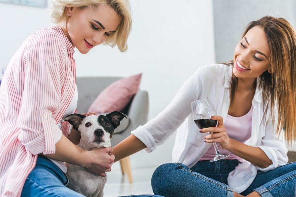 MosCATo e charDOGnay: i vini perfetti per gli animali