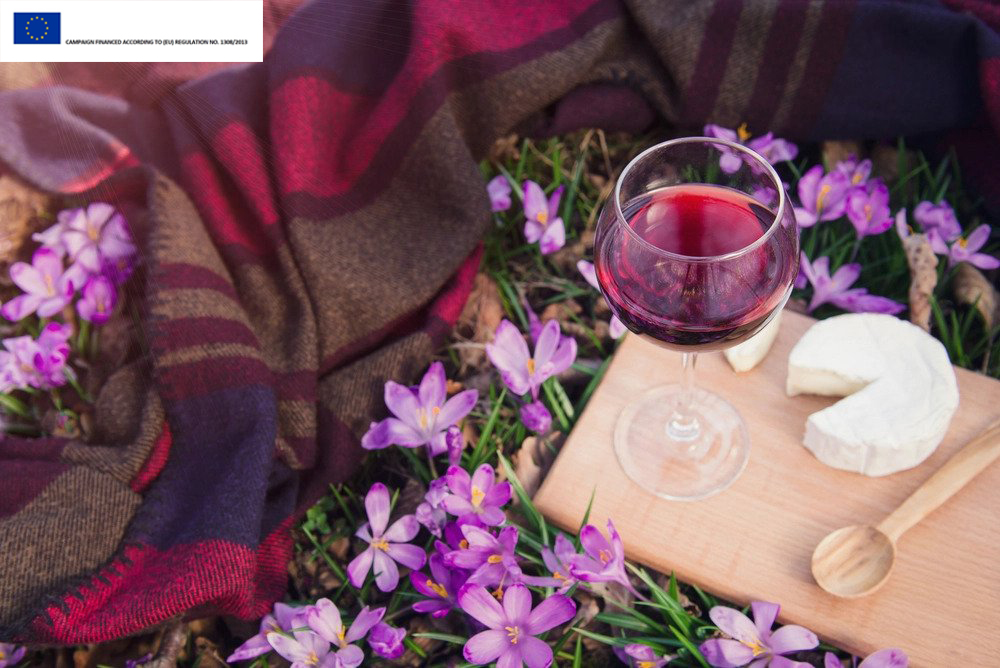 4 Quality Italian Wines for Spring | Profiles & Pairings